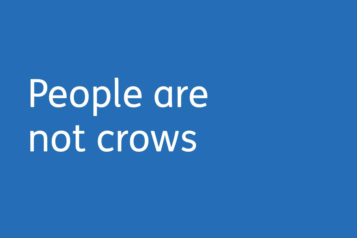 People are not crows